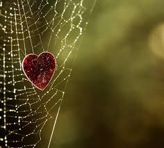 Heart in a spiderweb