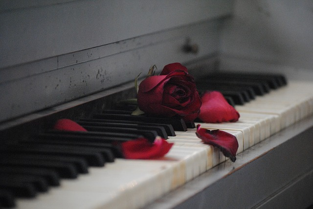 Piano with rose petals on it